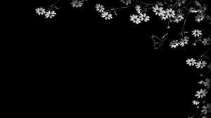 Превью обои бабочка, цветы, черный фон