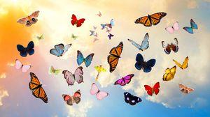 Превью обои бабочки, небо, коллаж, фотошоп