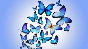 Превью обои бабочки, разноцветный, синий, рисунок, арт, красиво