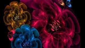 Превью обои цветы, пелена, фон, темный