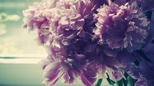 Превью обои цветы, пионы, букет