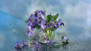 Превью обои цветы, стекло, лепестки