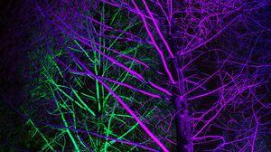 Превью обои деревья, подсветка, неон, фиолетовый, зеленый