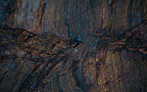Превью обои дерево, поверхность, текстура, влажный