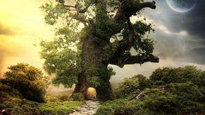 Превью обои дерево, зелень, вход, ступеньки, планета