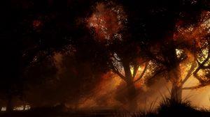 Превью обои деревья, ночь, осень