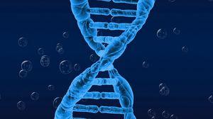 Превью обои днк, спираль, генетика, закрученный