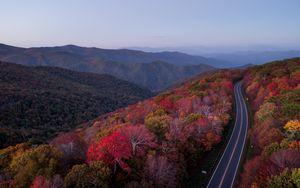 Превью обои дорога, деревья, осень