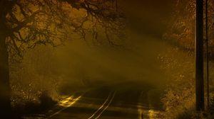 Превью обои дорога, ночь, туман, разметки