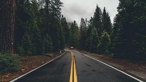 Превью обои дорога, разметка, деревья, поворот, асфальт, лес