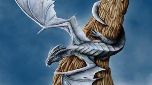 Превью обои дракон, дерево, крылья, обвитие