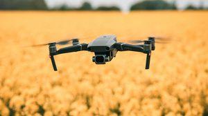 Превью обои квадрокоптер, дрон, полет, цветы, желтый, поле