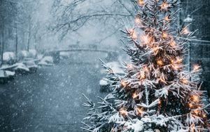 Превью обои елка, гирлянды, снег, зима, новый год