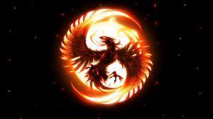 Превью обои феникс, птица, шар, перья, свет