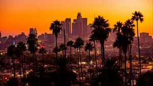 Превью обои город, пальмы, закат, здания, небоскребы, лос-анджелес