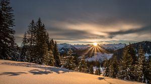 Превью обои горы, зима, снег, солнечный свет, ели