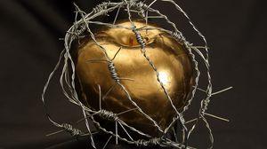 Превью обои яблоко, колючая проволока, капли, золото