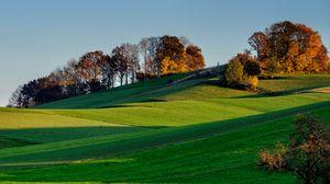 Превью обои холмы, трава, небо, деревья