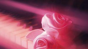 Превью обои клавиши, роза, нежное, розовое