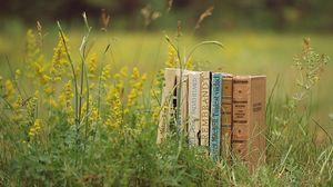 Превью обои книги, трава, стопка, настроение