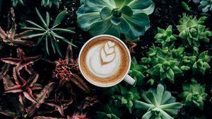Превью обои кофе, пенка, растения