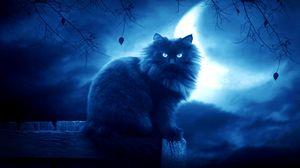 Превью обои кот, черный, луна, ночь, силуэт, очертания