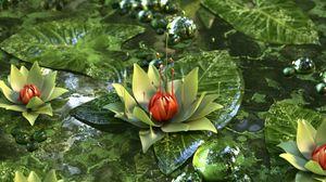 Превью обои кувшинка, лотос, цветок, зеленый