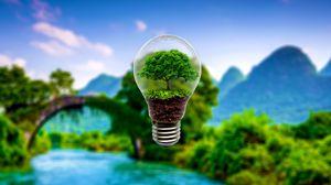 Превью обои лампа, дерево, миниатюрный, размытость