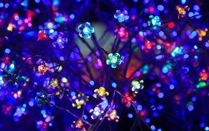 Превью обои лампочки, цветы, неон, свет, освещение, блики, боке, разноцветный