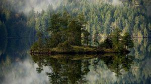 Превью обои лес, озеро, отражение, остров, туман