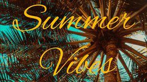 Превью обои лето, вибрации, пальма, настроение