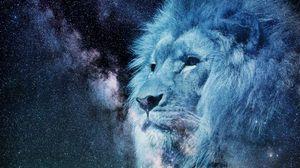Превью обои лев, морда, звездное небо, звезды, фотошоп, король зверей, хищник