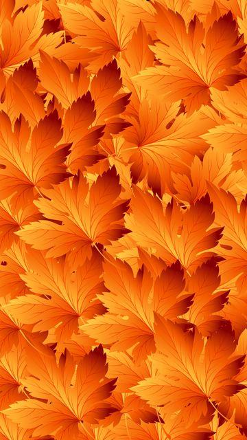 360x640 Обои листья, узоры, осень, текстура, клен