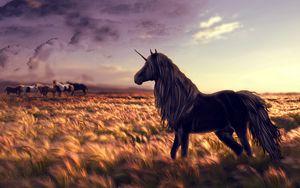 Превью обои лошадь, единорог, поле, арт, трава, ветер