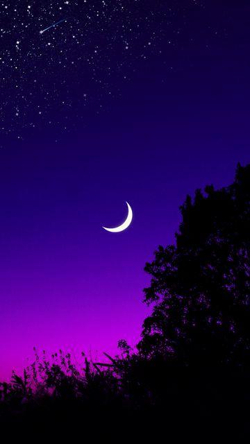 360x640 Обои луна, дерево, звездное небо, ночь, звезды, темный