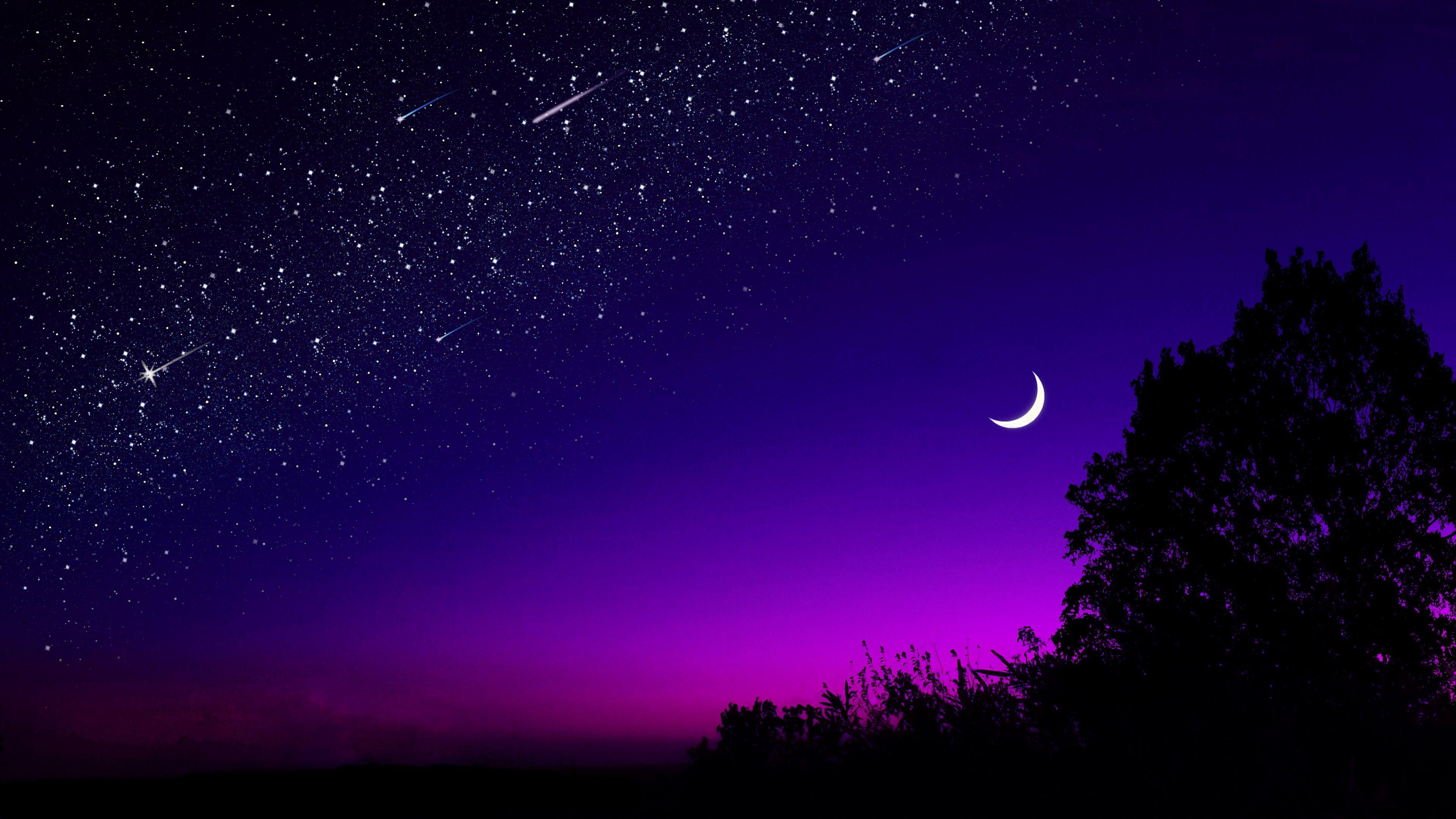 3840x2160 Обои луна, дерево, звездное небо, ночь, звезды, темный
