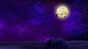 Превью обои луна, лунный свет, птицы, звездное небо, ночь, фотошоп