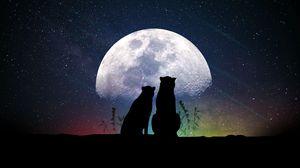 Превью обои луна, силуэты, звездное небо, животные