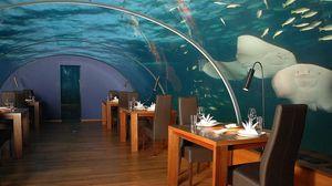 Превью обои мальдивы, тропики, подводный ресторан