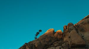 Превью обои минимализм, небо, скалы, растение