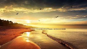 Превью обои море, берег, природа, птицы, свет