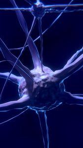 Превью обои нерв, нейрон, синапс