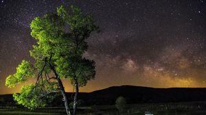Превью обои ночь, небо, звезды, дерево