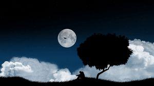 Превью обои одиночество, дерево, ночь, поляна, небо, темный