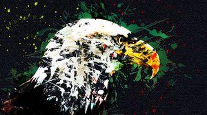 Превью обои орел, арт, клюв