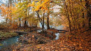 Превью обои осень, мостики, деревья, лес, листья, желтые, вода