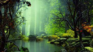 Превью обои озеро, деревья, камни, туман, арт