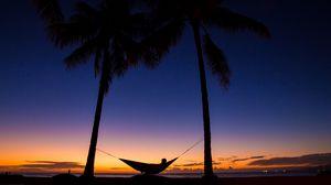 Превью обои пальмы, гамак, ночь, силуэты, отдых, тропики