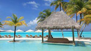 Превью обои пальмы, отдых, лежаки, бассейн