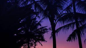 Превью обои пальмы, темный, силуэты, сумерки, закат